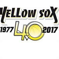 Logo 12) Yellow Sox