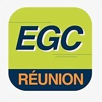 Logo 15) Egc Réunion
