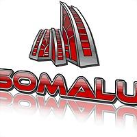 Logo 40) Somalu