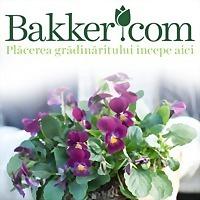 Logo 7) Bakker & Buursink Bv