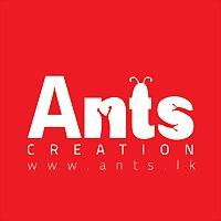 Logo 76) Ants Creation