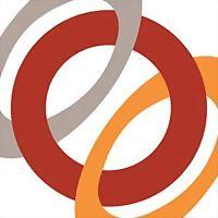 Logo 46) Ams