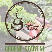 Logo 9) Groene Start