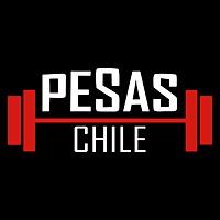 Logo 32) Pesaschile