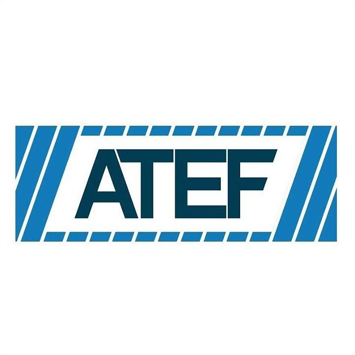 Logo 73) ATEF Group of Companies