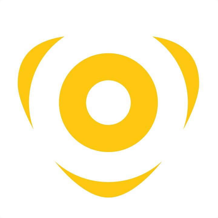 Logo 49) Citymesh