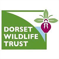 Logo 12) Dorset Wildlife Trust