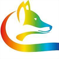 Logo 12) Colorfox