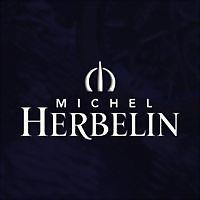 Logo 45) Michel Herbelin Deutschland
