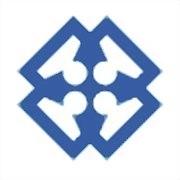 Logo 3) Team Solutionz Ltd.