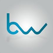 Logo 38) BlueWeb Solutions