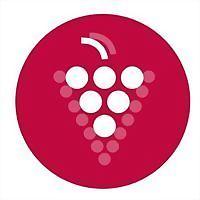 Logo 6) Sklepy Moravy