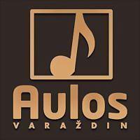 Logo 2) Aulos
