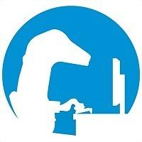 Logo 8) Digital Gecko Caracas