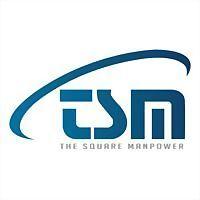 Logo 3) The Square Manpower