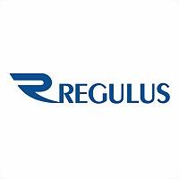 Logo 22) Regulus Armenia