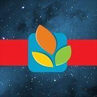 Logo 1) Mg