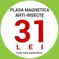 Logo 13) Magnetomesh Romania