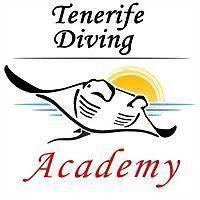 Logo 2) Padi Divemaster Internship Academy