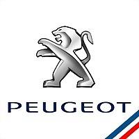 Logo 4) Diagauto Service