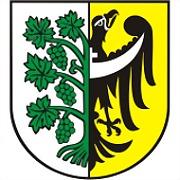 Logo 23) Miasto I Gmina Środa Śląska
