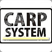 Logo 26) Carp System