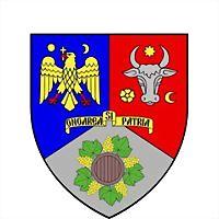Logo 42) Consiliul Judetean Vrancea