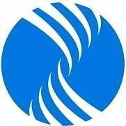 Logo 4) Nases