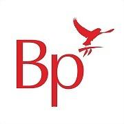 Logo 2) Best Practice Software