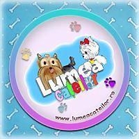 Logo 23) Haine Catei