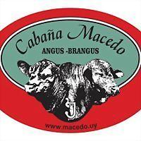 Logo 6) Cabaña Macedo