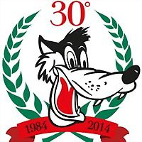 Logo 35) Lupo Sport