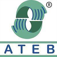 Logo 3) Ateb