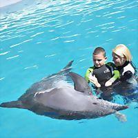 Logo 5) Dolphinswim Alphatherapie