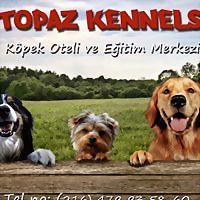 Logo 28) Topaz Kennels