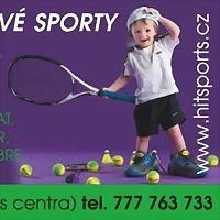 Logo 63) Hitsports