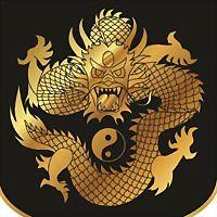 Logo 23) Dragonstudios