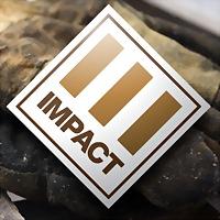 Logo 8) Impact Environmental