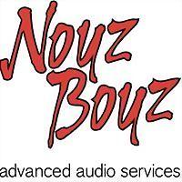 Logo 16) Noyz Boyz Audio