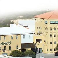 Logo 1) Arab Veterinary Industrial Co. Avico