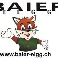 Logo 40) Baier Haustechnik Inhaber Vincenzo Paternò-Elgg