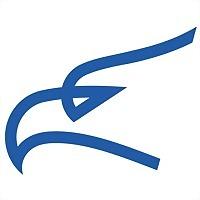 Logo 4) Montenegro Airlines