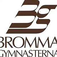 Logo 46) Brommagymnasterna