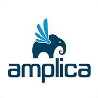 Logo 26) Amplicanet