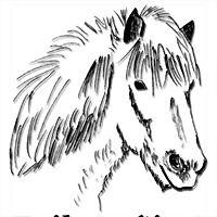 Logo 7) Islandpferde-Farm Egilsstaðir 1