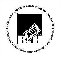 Logo 5) Asocijacija Za Umjetničku Fotografiju Bih
