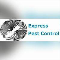 Logo 7) Express Pest Control