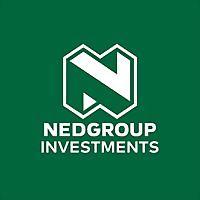 Logo 28) Nedgroup Investments