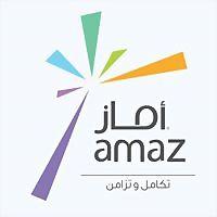 Logo 27) Amaz Digital Marketing And Web