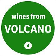 Logo 40) Vinorum